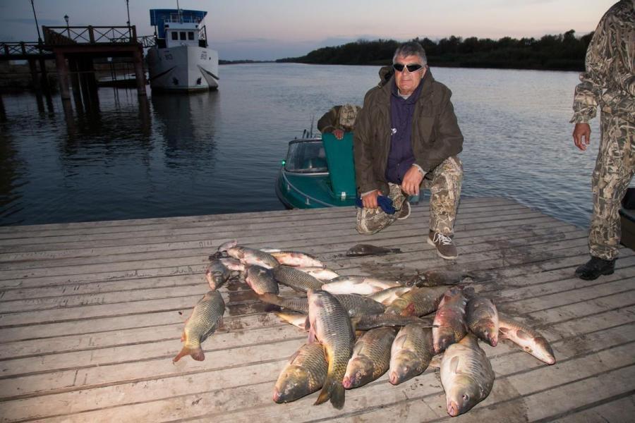 дорожки, фото самого красивого рыболовного базы владельцы кроликов считают